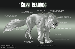 Silky Beardog Species Sheet by sevas-tra