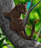 The Foosaaaa  fossa and weevil by Psithyrus