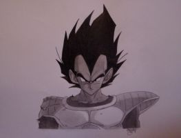 Vegeta again... by FrEsHyLiCi0uZ