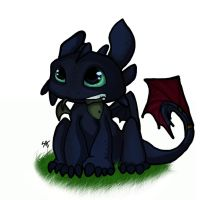 Toothless by For-BIG-Mistakes