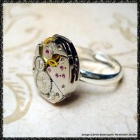 Steampunk Ring by SoulCatcher06