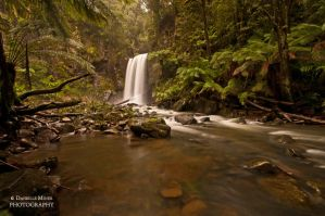 Hopetoun Falls Otways by daniellepowell82