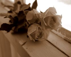 Sweet Vintage Roses by SummerStar367