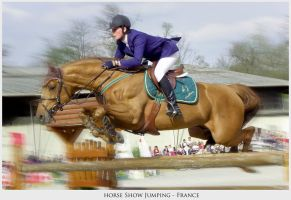 horse Show Jumping by woodybook