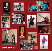 Anime North 2012 Photo Collage by Pasiphilo