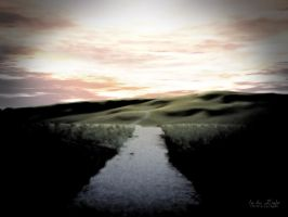 In the Light by envisage