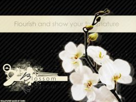 Blossom - Wallpaper by ShiaChewy