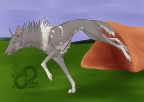 Flight: TKC Agility Title NA by PaintedCricket