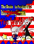 Pinky and The Brain by Octavius1982