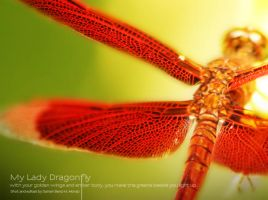 My Lady Dragonfly by ClumsyCraft