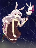 AT: White Rabbit by niekaori
