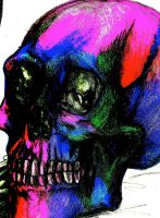 Woha man that skull is like.... colorful by That-Love-Voodoo