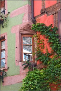 Another Alsace Window by 2Stupid2Duck