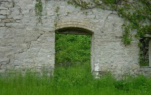 Overgrown Stone Wall with Door by FantasyStock