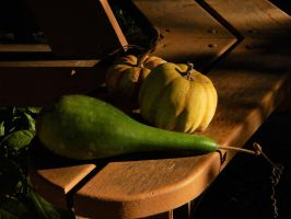 Green and Yellow Gourds by Artlune