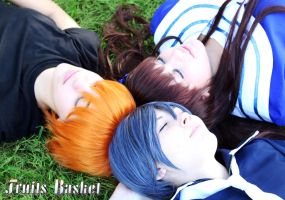 For Fruits Basket by II2DII