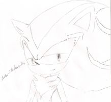 .:Shadow The Hot Hedgehog:. by sira-the-hedgehog