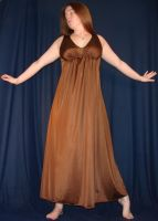 Brown Gown Delightfulstock by DelightfulStock