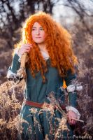 Lady Merida by rensuchan