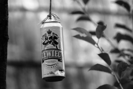 zywiec by deadlive