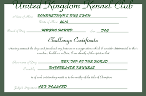 RBK Top of the World - Challenge Certificate by TheChiefofTime