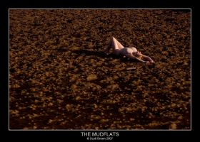 The Mudflats by scottb