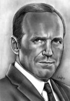 Director Coulson by Mannaz11
