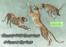 Cheetah PNG Stock Pack by Roys-Art