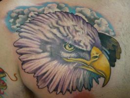 eagle by TimOrth