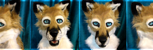 Swift Fox Head SOLD by WindWo1f