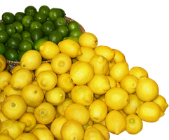 Lemons and Limes by StockChroma