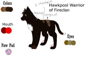 Hawkpool Refrance Sheet by sky-lover10