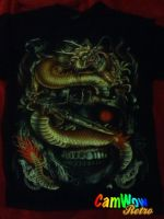 my dragon shirt with skull. by Wolf-Angel-whitewing