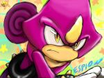 Espio The Charmelion by Amely14128