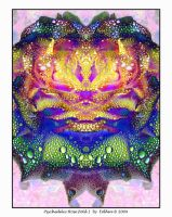 Psychedelic Rose Fold I 302 by Eolhin