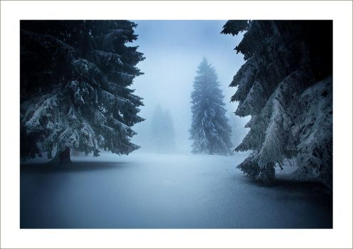 Winter Wonderland - Part. 3 by Androgynous23
