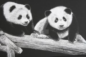 Fuzzy Pandas by AaronG3
