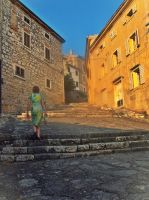 Narrow cobblestone street is named 'kala' by Iraanamaria