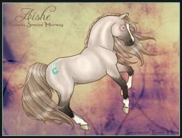 Aishe - Colonial Mustang by NoodleMutt