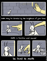 Be Kind to Moth [3] by MaryCapaldi