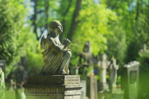 Lychakiv Cemetery by inSOLense