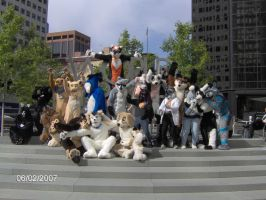furrys at world trade centers by night-wolf-2769