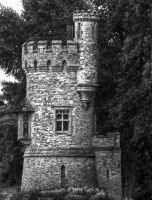 Appley Tower by Tangent101