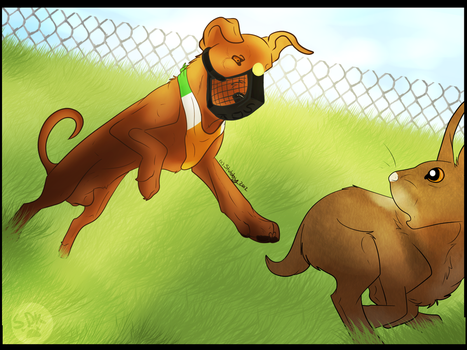 That Look In His Eyes by Stubborn-Dog-Kennels