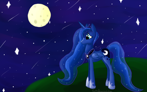 Luna's Night. by tori99