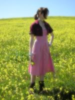 Aerith Among the Flowers by Liquidfire3