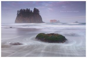 Second Beach Sunrise by Nate-Zeman