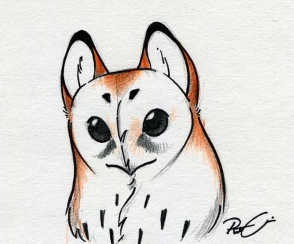 owl face by RobtheDoodler