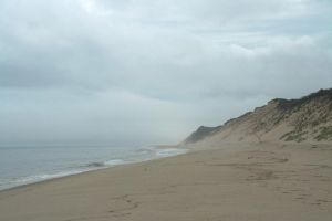 Wellfleet by RachelDS