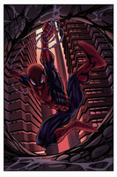 Spidey Splash Page Colors by Ironcid